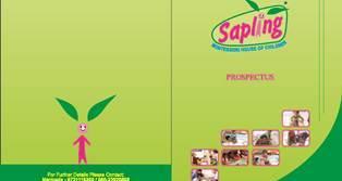 Sapling-Prospectors_Page_1