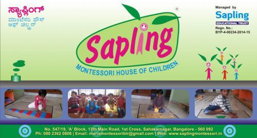 Sapling-SignBoard----13x7ft---2015